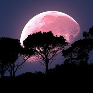 Full Strawberry Moon and 5 Bright Planets Visible to the Naked Eye - Eyes On The Skies Strawberry-moon-300x300